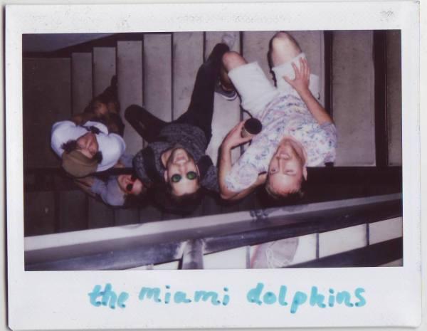 Miami Dolphins Minneapolis