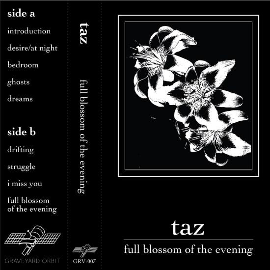 Taz Full Blossom of the