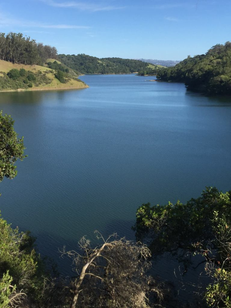 View of Lake Chabot.