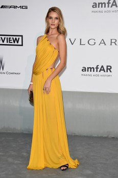cannes-2014-amfar-rosie-huntington-whiteley