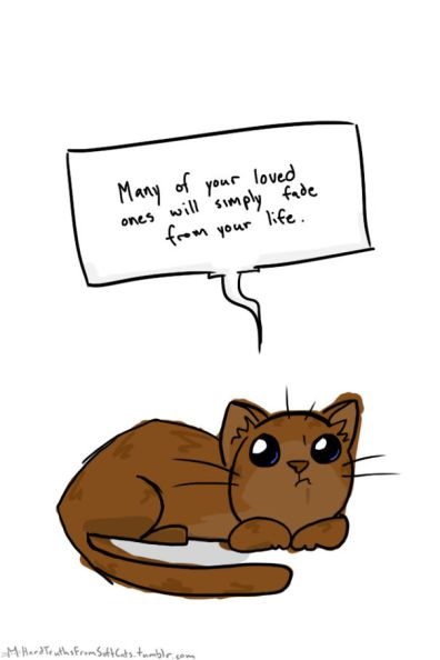 hard-truths-from-soft-cats-illustrations-27-59141db908ab3-png__605