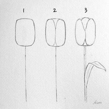how-to-draw-a-flower-kate-kyehyun-park-6 (1)