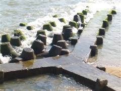 ocean wall