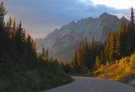 maligine-lake-road-landscape.jpg