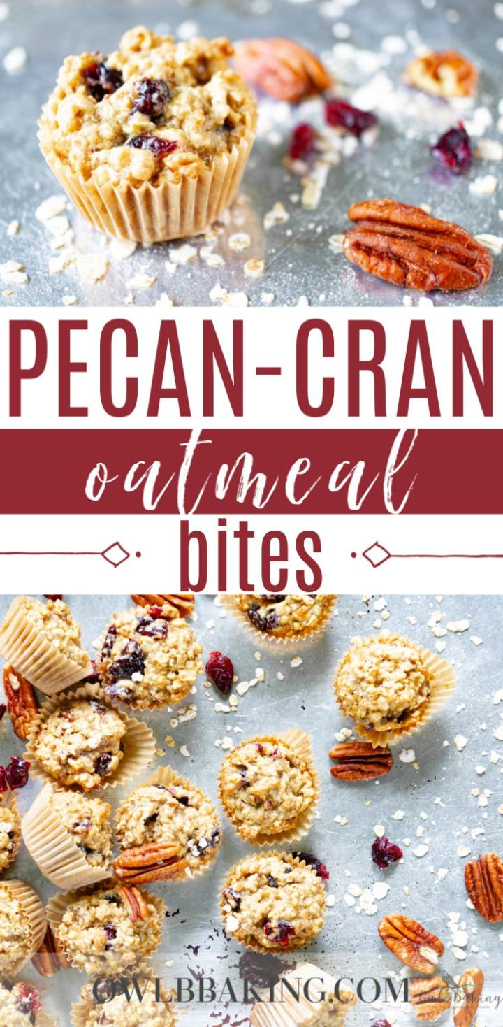 Pecan-Cran Oatmeal Bites