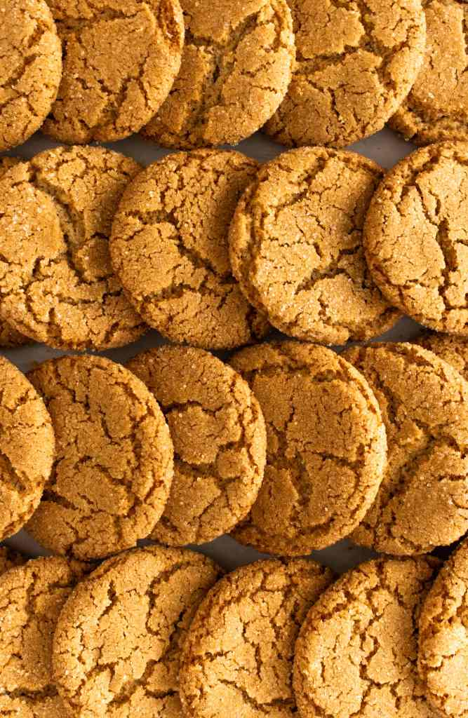 Maple Ginger Snap Cookies_stacked in rows