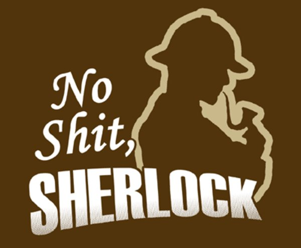 "Origins of ""no shit, Sherlock!"" 