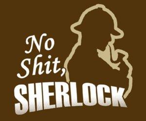 no_shit_sherlock