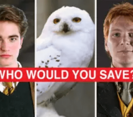 "Would You Answer These ""Harry Potter"" Polls The Same Way As Everyone Else? 3"