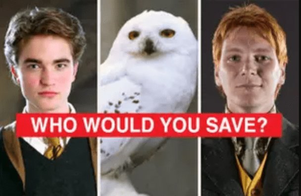 """Would You Answer These """"Harry Potter"""" Polls The Same Way As Everyone Else? 1"""