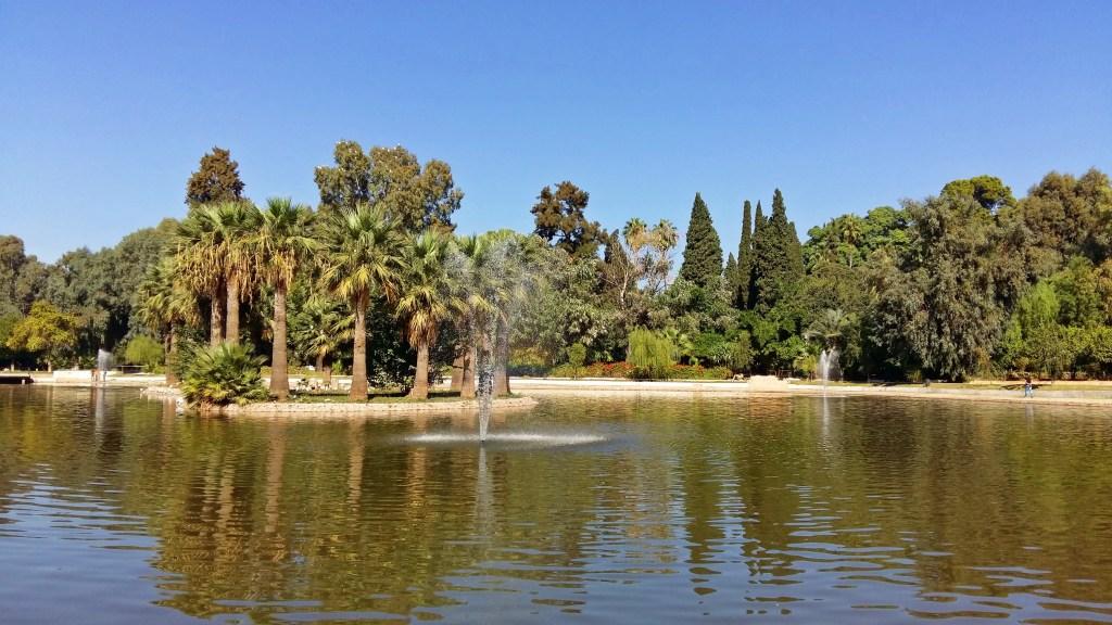 relax in fes garden