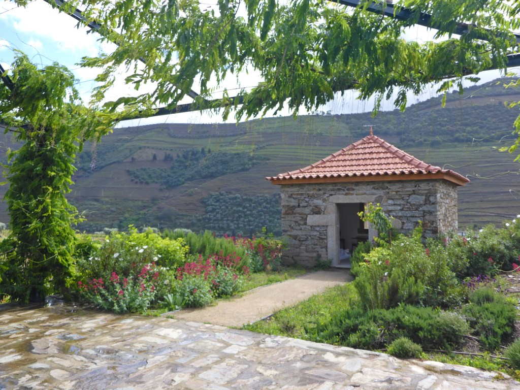 day-trip-porto-douro-valley