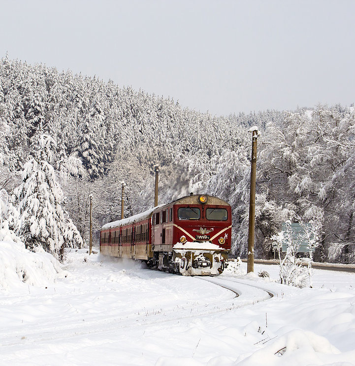 the rhodopes narrow gauge in bulgaria in winter