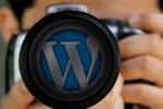 ワードプレスブログとinstagram連携したった。ワードプレスでインスタのギャラリー表示。