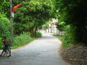 ベトナム:のどかな景色