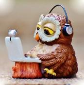 owl-typing