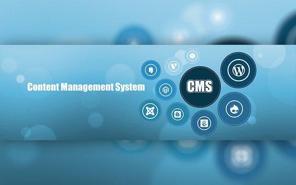 Популярная ошибка при запуске нового сайта: CMS надо выбирать правильно