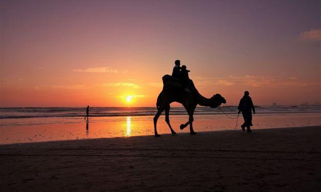 Dlaczego warto zwiedzić Maroko zimą?