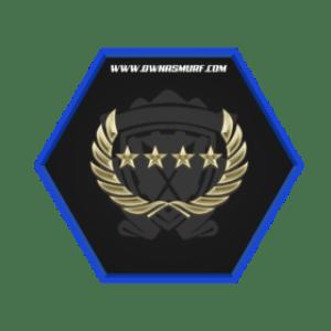 GNM Rank Single Medal Account
