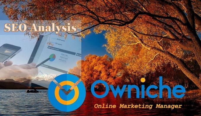 SEO Analysis Online Marketing NZ - Owniche 680_mini