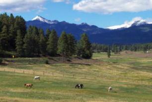 North Pagosa Springs pasture ranch