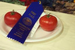 blue ribbon tomatoes!
