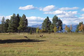 Echo canyon ranch land ranch