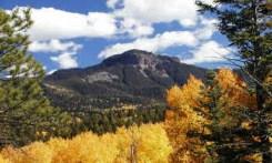 rito blanco mountain view