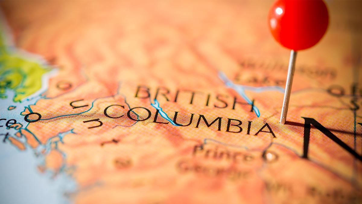 How to Incorporate in British Columbia: The Definitive Guide