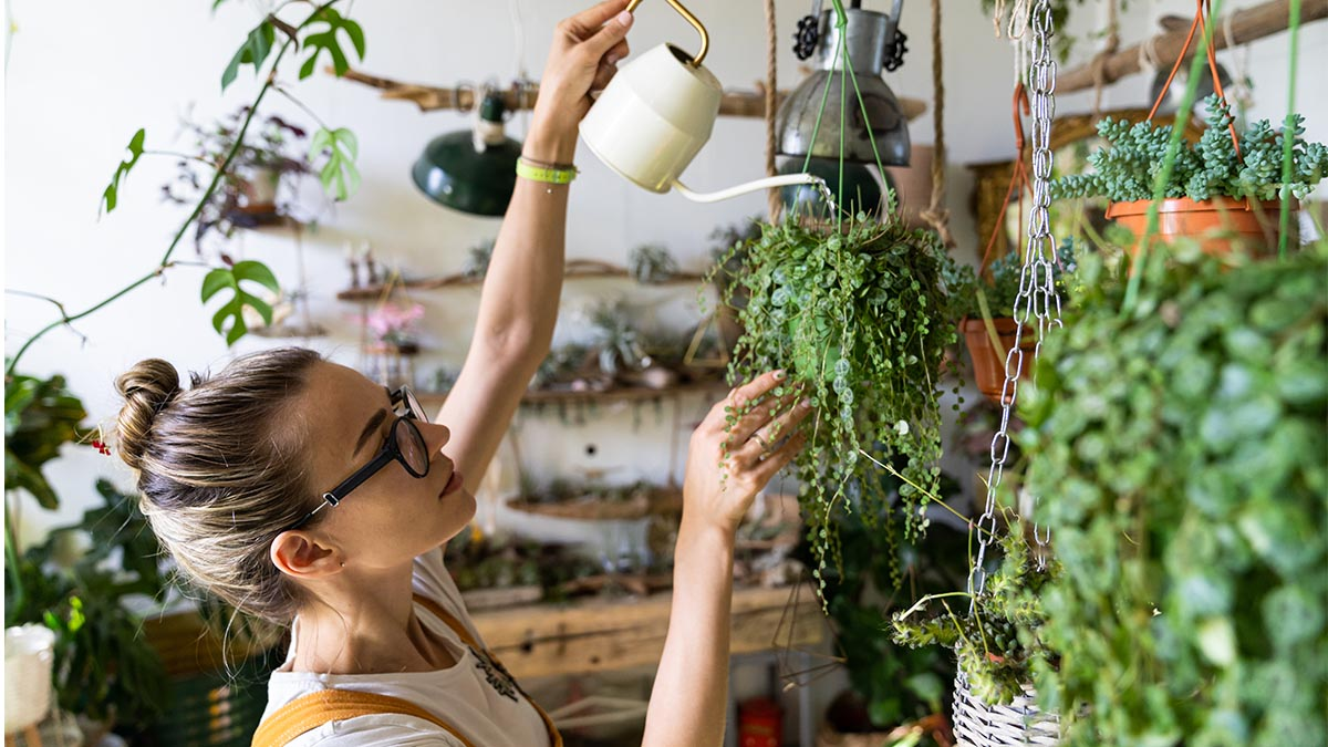 23 Sustainable Business Ideas for Green Entrepreneurs