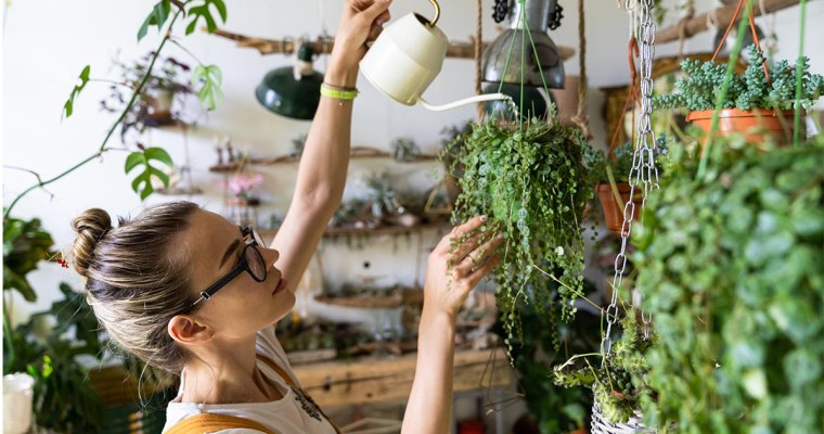 23 Sustainable Business Ideas for Green Entrepreneurs