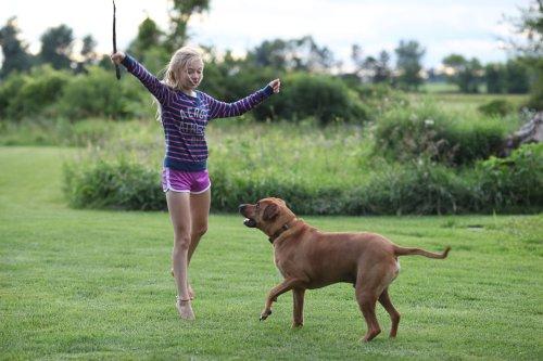 the magic flying dog #3