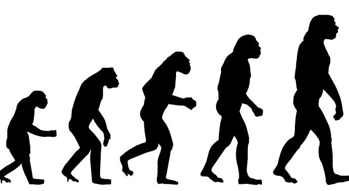 Evolution alert: squirrels and rattlesnakes alike