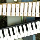 glockenspiel and melodica