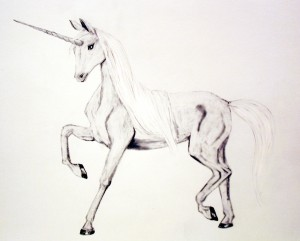 Unicorn drawing