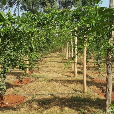 farm management systems