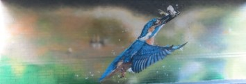 oxford-canal-mural-painting-days-75-b