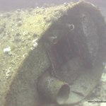 red-sea-diving_310112_0292.jpg