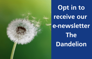 Opt in to newsletter