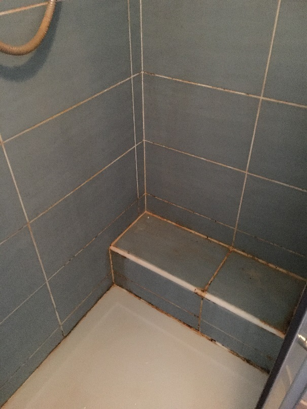 Mouldy Ceramic Tiled Shower Woodstock Before Cleaning