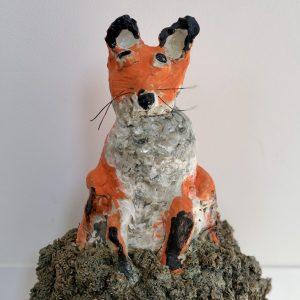 Fox, Student Gallery