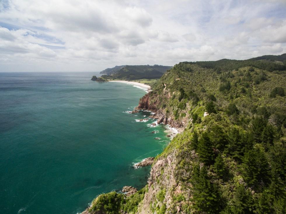 Whiri coast blog