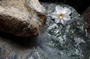 天然温泉「いいじま温泉」 天然温泉「いいじま温泉」は、大浴場・露天風呂。美肌の湯として評判をいただいております。観光地から外れていますので、宿泊のお客様だけでゆっくりくつろいでいただけます。