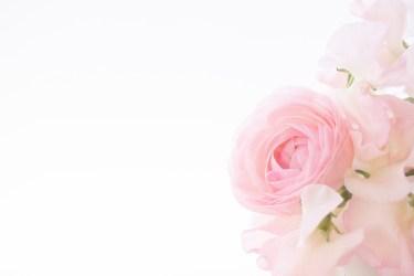 兄弟の結婚祝い、式なしでもご祝儀は渡しましょう。渡し方と相場