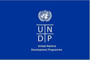 UNDP Internship Programme