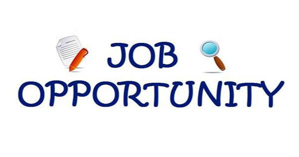 HSE Consultant Job