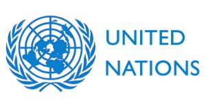 UNV and UNFPA Young Innovators Fellowship Programme