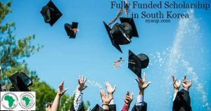 Scholarship in South Korea Archives - OYA Opportunities