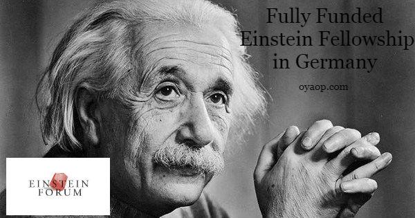 Einstein Fellowship