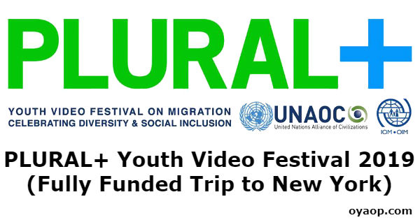 PLURAL+ Youth Video Festival 2019 (Fully Funded Trip to New